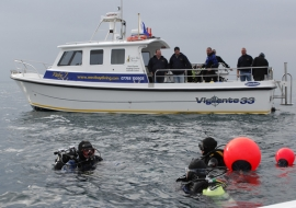 divers_in_water